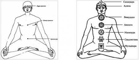 Психические узлы в йоге