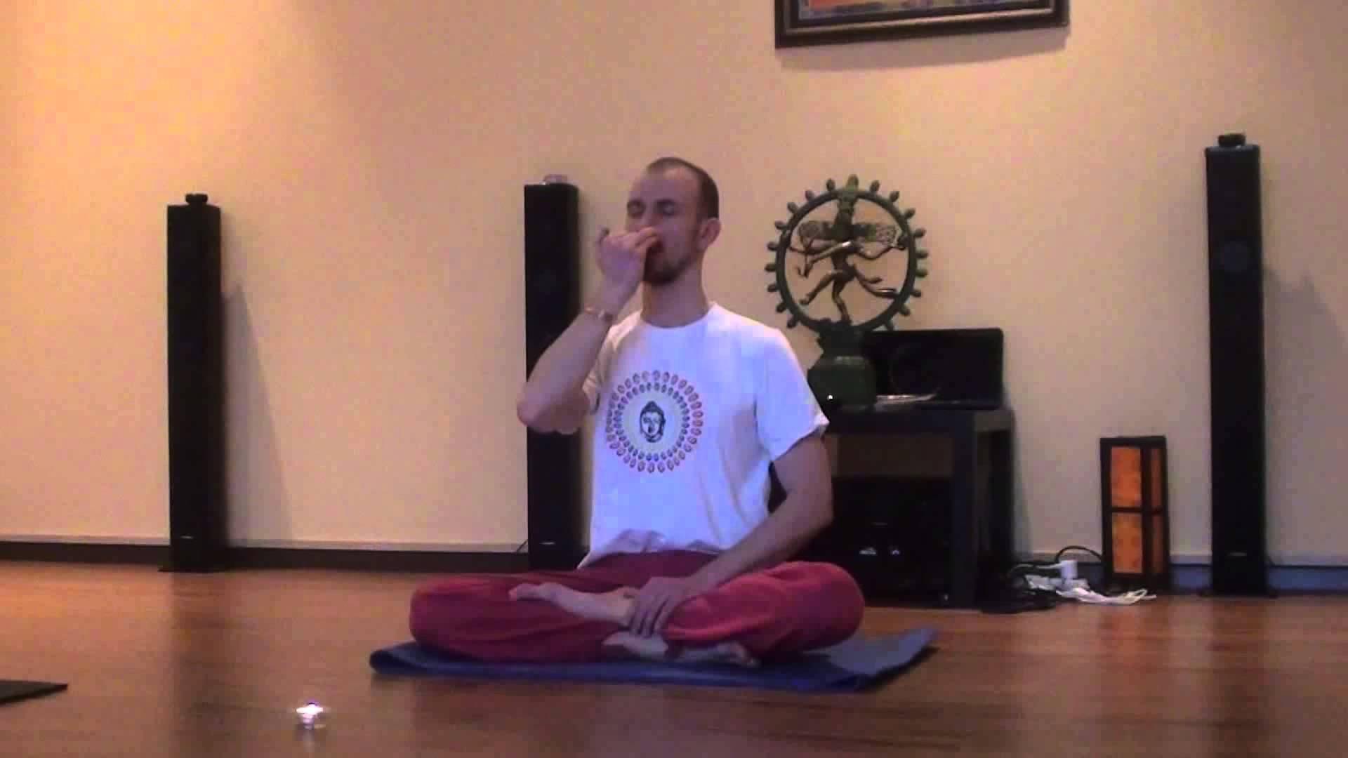 Виды йоги: их описания и отличия